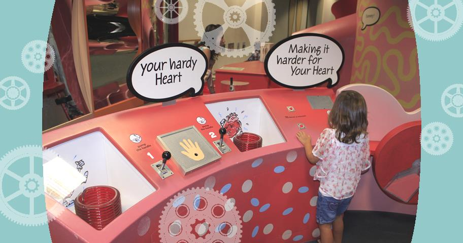 Exploring the wonders of the human body at The Hawaii Children's Discovery Center , Honolulu, HI